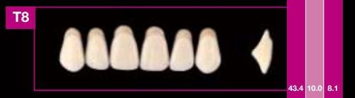 Dientes Cosmo HXL T8 (ant. sup. forma trapecial)