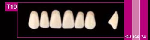 Dientes Cosmo HXL T10 (ant. sup. forma trapecial)