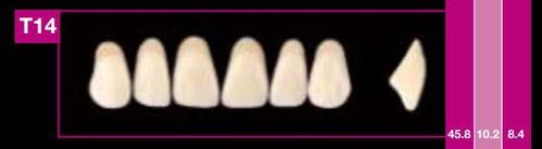 Dientes Cosmo HXL T14 (ant. sup. forma trapecial)