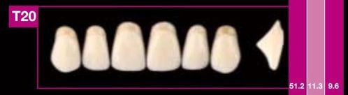 Dientes Cosmo HXL T20 (ant. sup. forma trapecial)