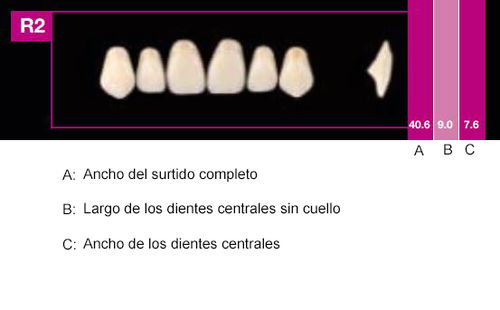 Dientes Cosmo HXL R2 (ant. sup. forma redondeada)