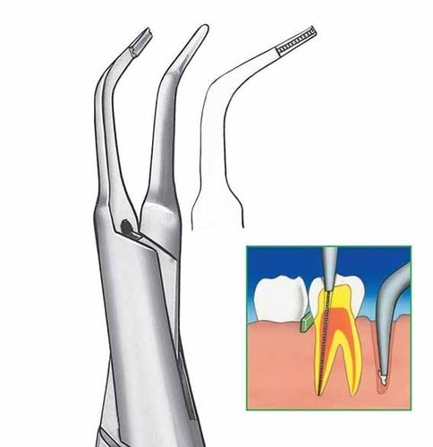 ALICATE ENDODONCIA CARL MARTIN 1206 CLINICA DENTAL